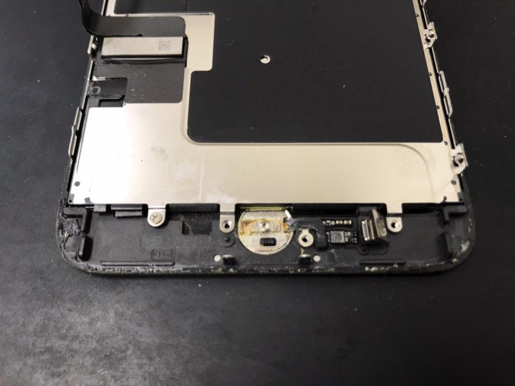 分解時のiPhone7Plus
